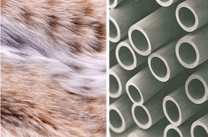 3 2 - What is Bionic Yarn Clothing Fabric? An Imperative Sustainable Fashion Revolution - Custom Fitness Apparel Manufacturer