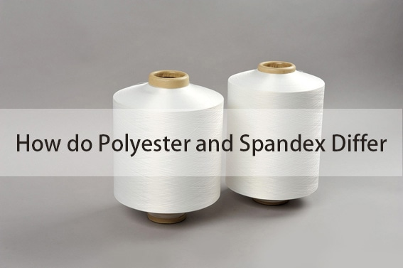 How do Polyester and Spandex Differ