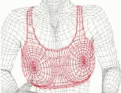 Why should we wear a  sports bra when workout